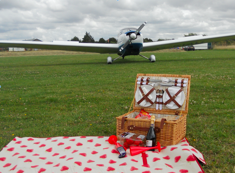 picnic in front of an aeroplane